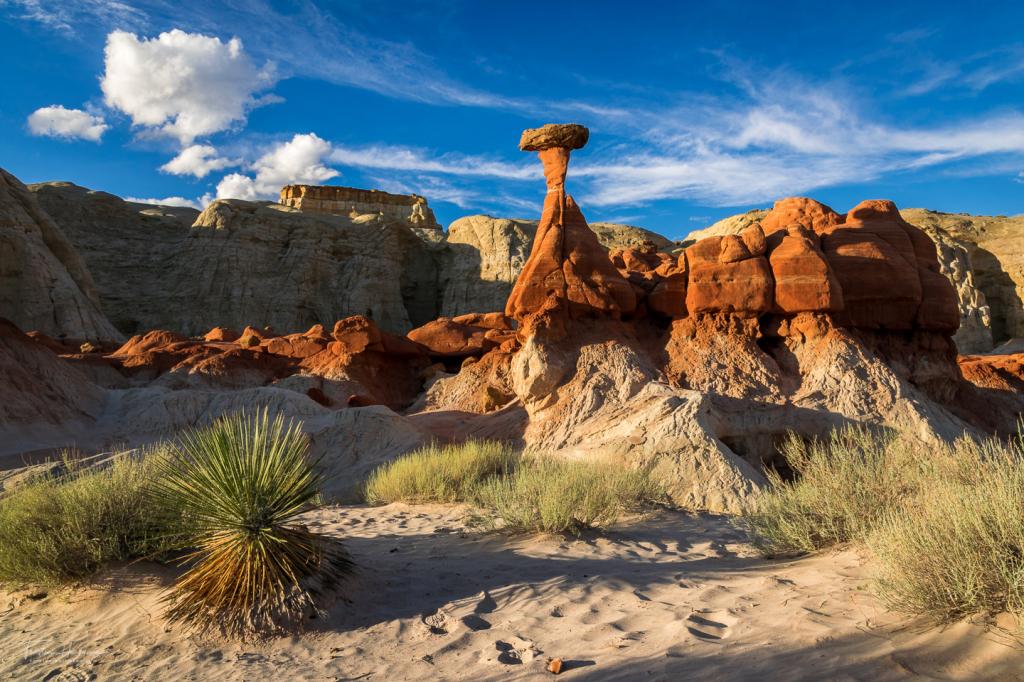 Toadstool Hoodoo - Utah